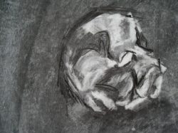 Sleeping dog charcoal on paper demonstrating using the rubber to reveal the lightest tones