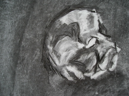 Sleeping dog charcoal on paper