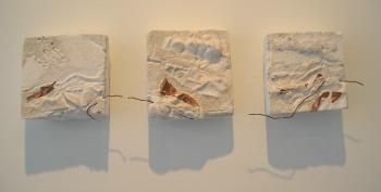 plaster plaques